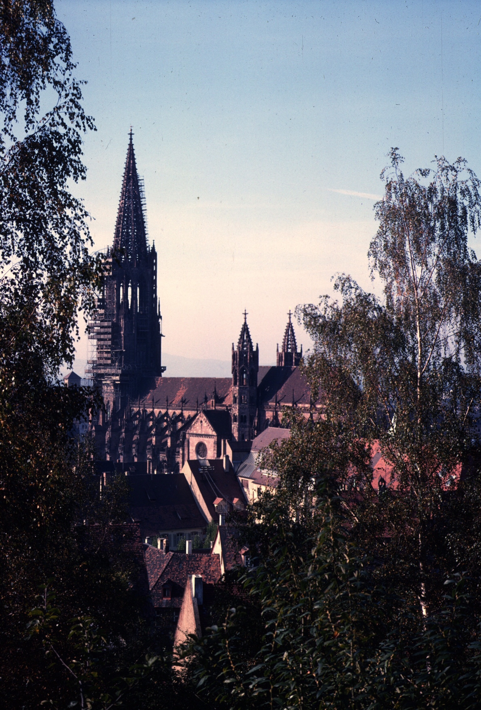 germany freibourg cathedral copy