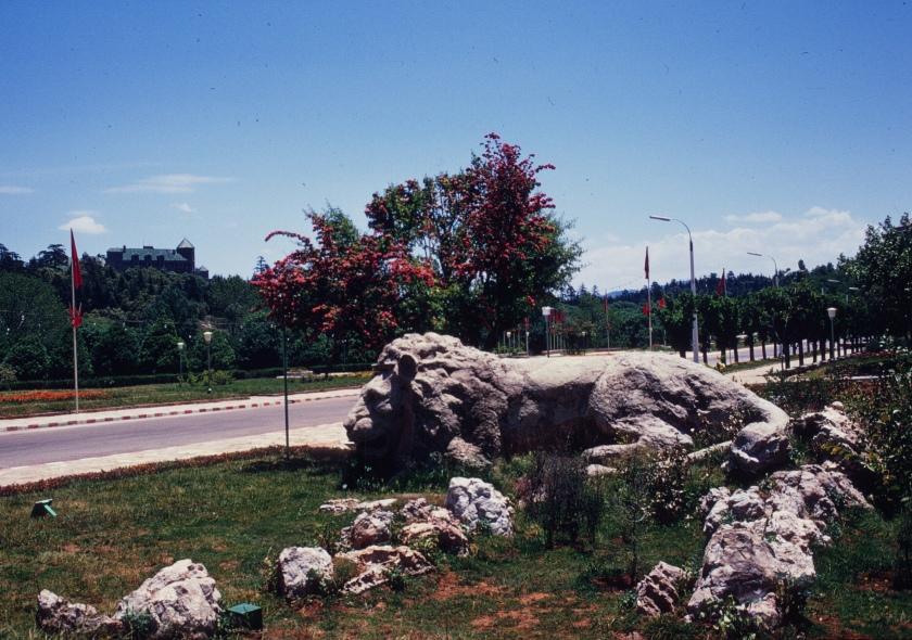 morocco ifrane lion palace