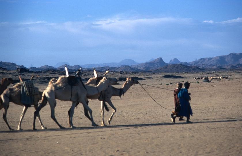 algeria sahara tamanrasset nomads